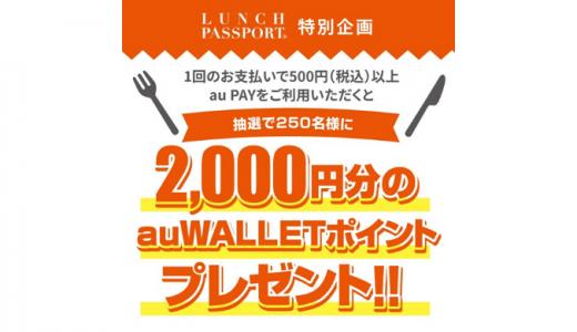 [au PAY] 高知の対象加盟店で500円以上au PAYで決済すると、抽選で2,000ポイントが当たる! | 2020年3月31日(火)まで